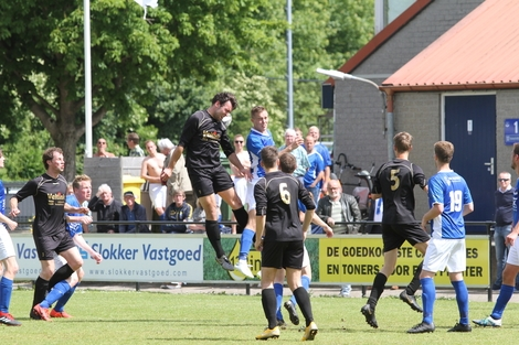 wvf voetbal westenholte 29 84