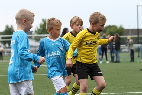 wvf voetbal westenholte 9 116