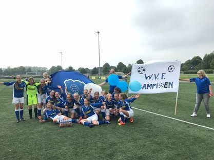 wvf voetbal westenholte MO15-1 1